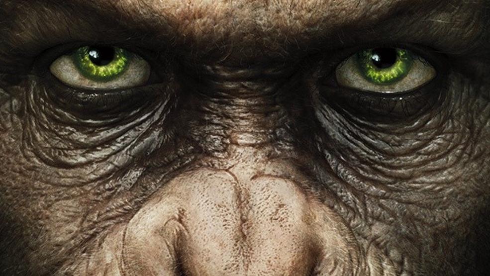 The Rise Of The Planet Of The Apes 2011 Fondazzjoni Kreattivita